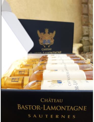 Sélection Sauternes (6...